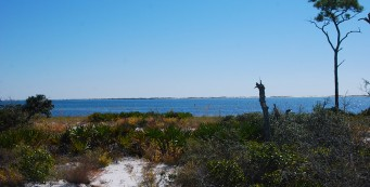View across the Big Lagoon to Perdido Key