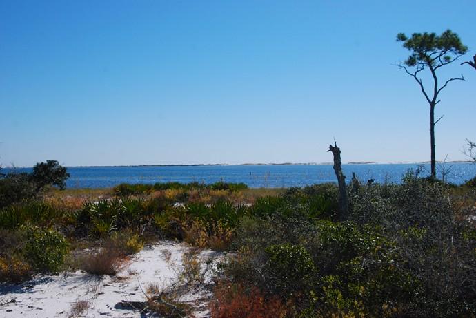 View across the Big Lagoon to Perdido Key