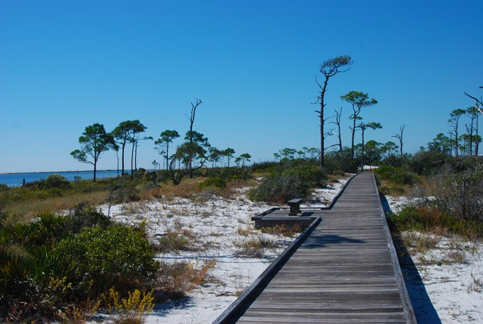 Boardwalk at Trout Point