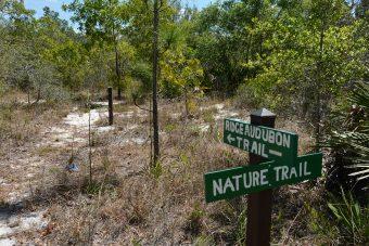 Ridge Audubon Trails