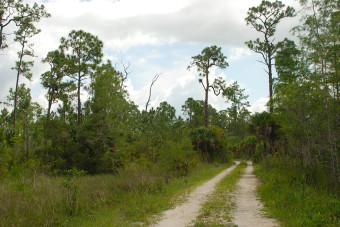 FT I-75 to Seminole