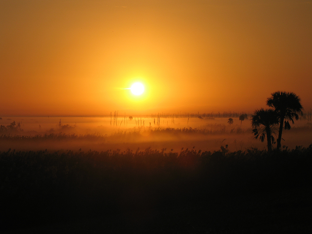 Sunrise at Moore Haven