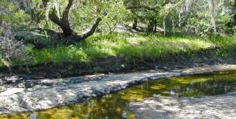 Myakkahatchee Creek