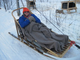 On a Dogsled