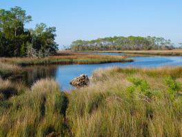 Florida Trail, Big Bend