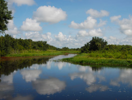 Florida Trail along the Kissimmee River