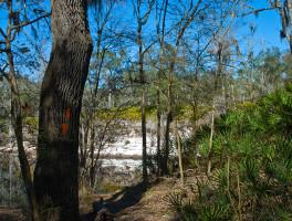 Florida Trail, Suwannee