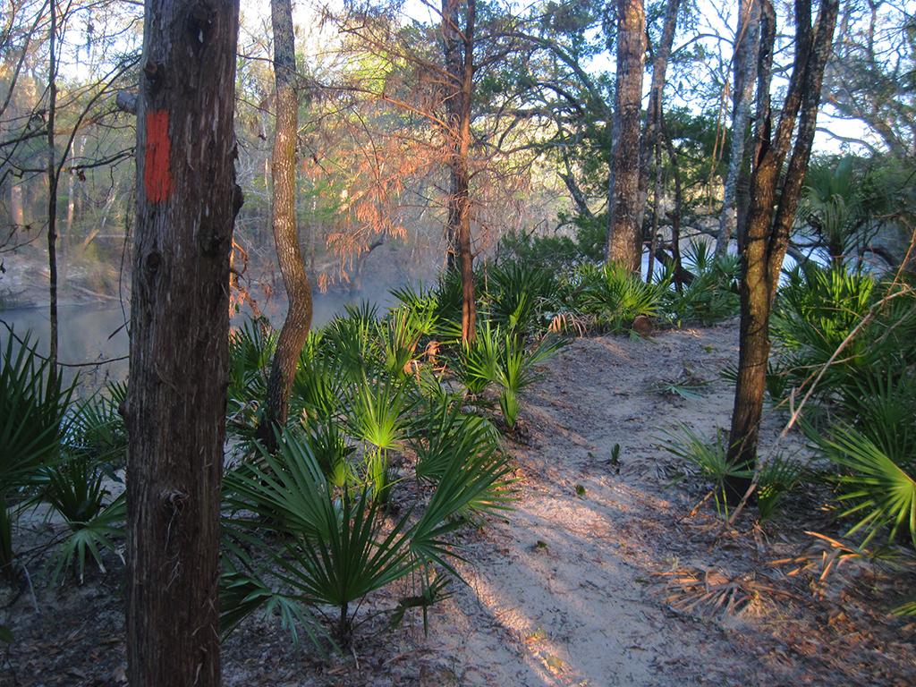 Florida Trail, Altha