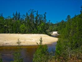 Florida Trail, Blackwater
