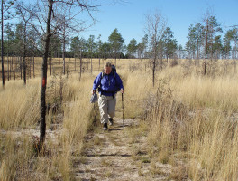 Florida Trail, Central Panhandle