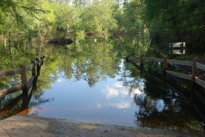 Suwannee River in flood stage
