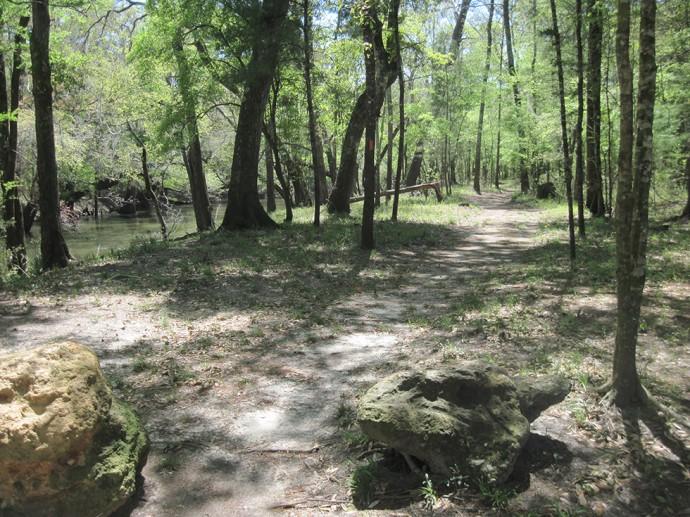 Greenway along the Chipola River