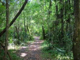 John Mahon Nature Park