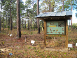 UF NATL Nature Trails