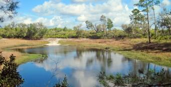 Florida Trail, Pat's Island to Hidden Pond