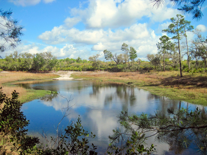 Florida Trail, Pat's Island to Hidden Pond