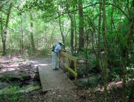Moonshine Creek Trails