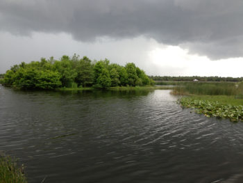 Caught in a thunderstorm at Green Cay Wetlands