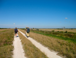 Florida Trail, Okee-tantie to Platts Bluff