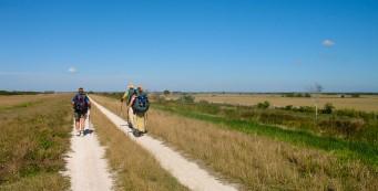 Florida Trail Okee-Tantie