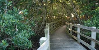 Duisberg Nature Trail
