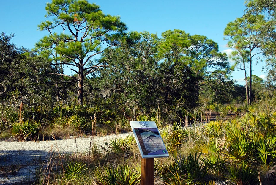 Amberjack Environmental Park