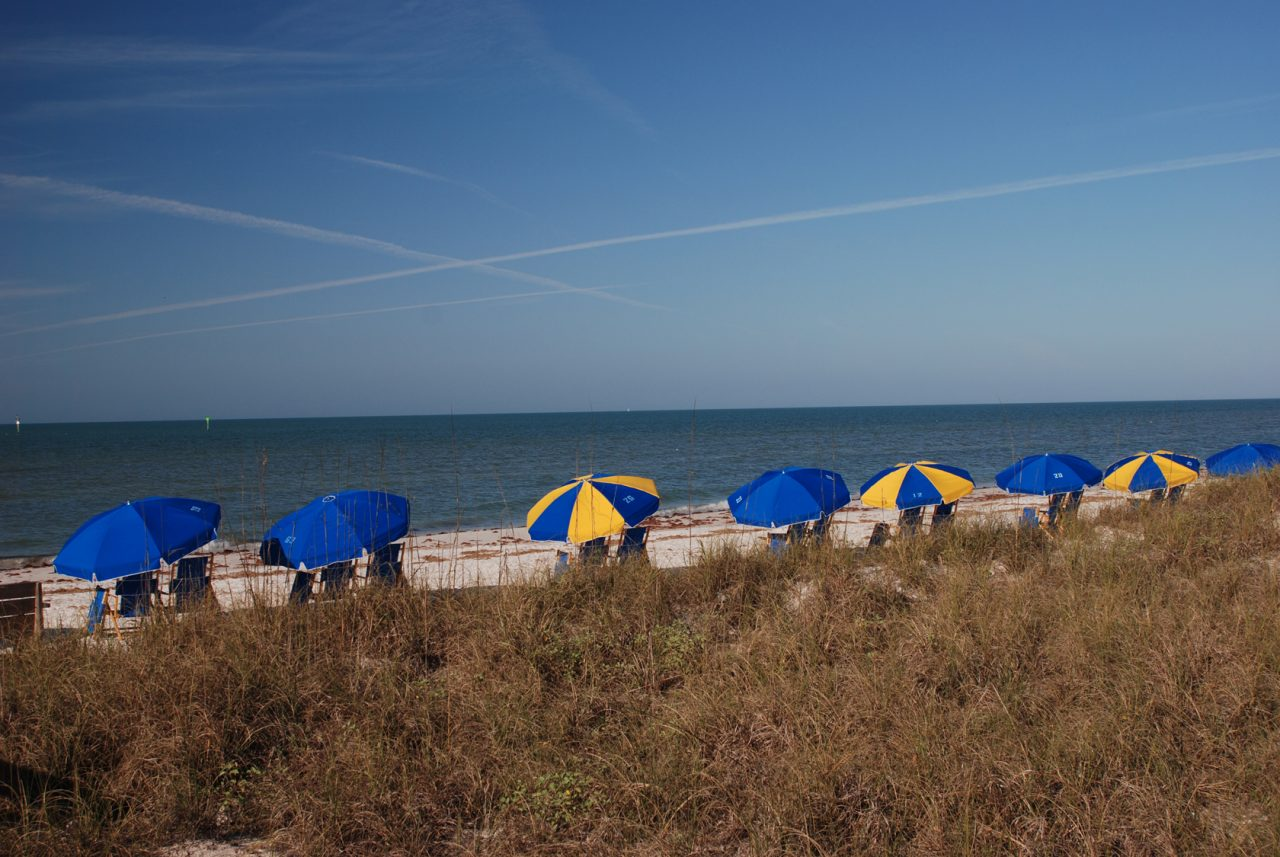 Beach at Honeymoon Island