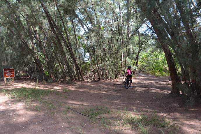 Mountain biker at Oleta River State Park