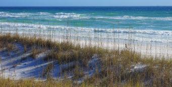 Emerald waves at Henderson Beach
