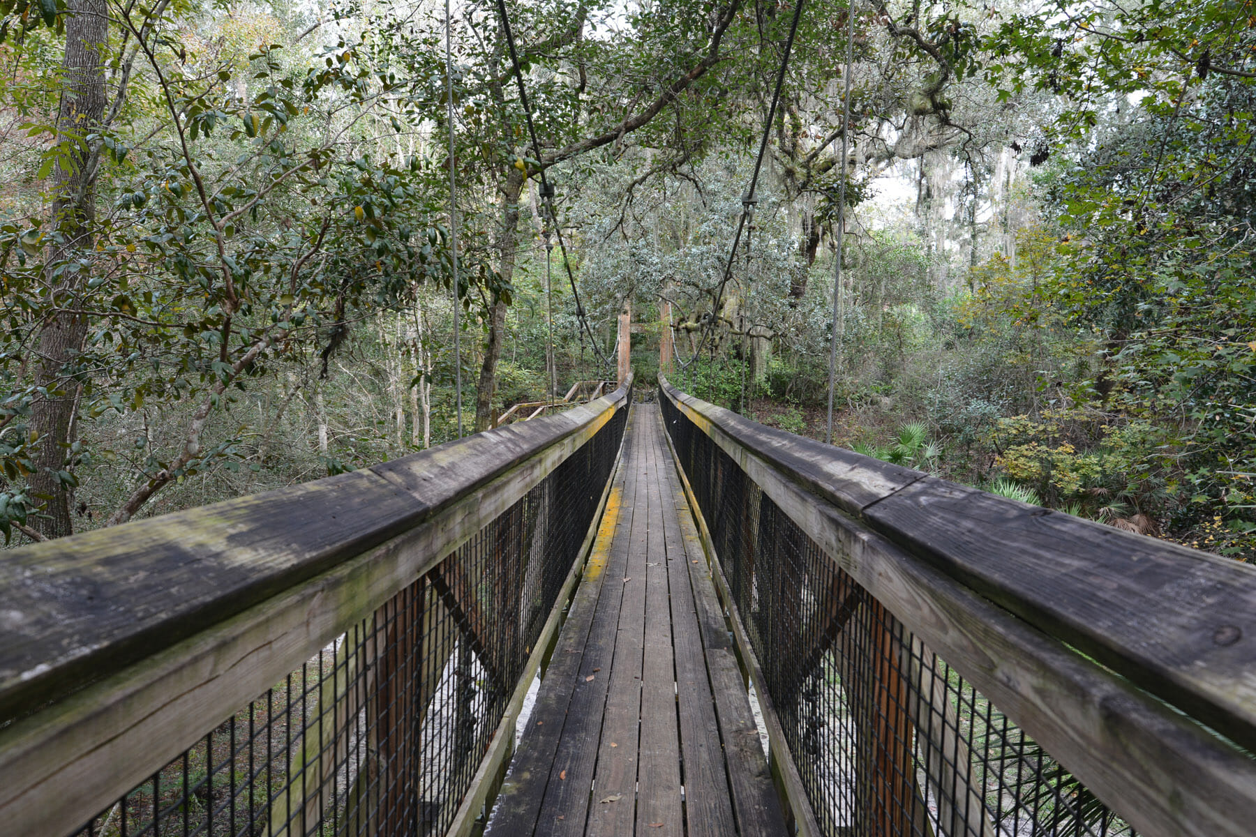 Swinging bridge at Ravine Gardens