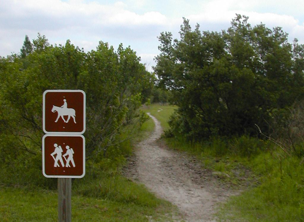 One of the non-biking trails at Alafia River State Park