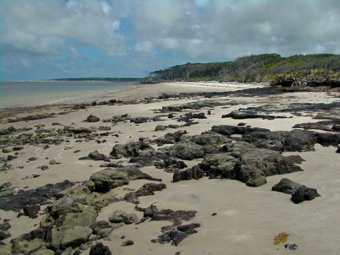 Blackrock Beach at Big Talbot Island State Park