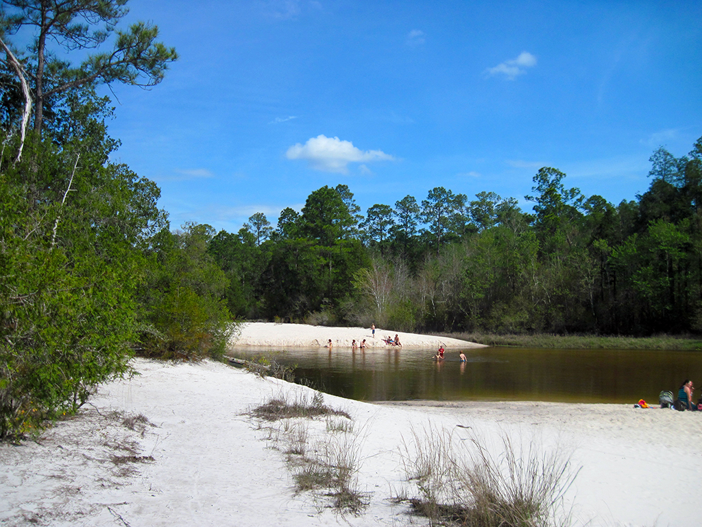 Busy swimming hole at Blackwater River State Park