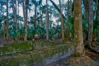 Bulow Plantation Ruins State Park