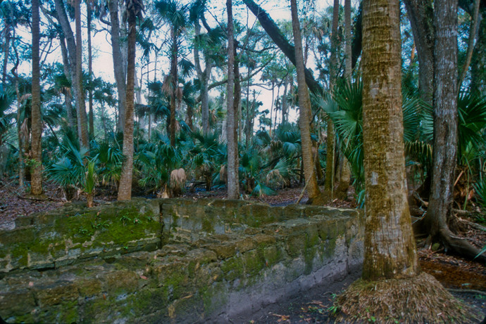 Spring house amid the plantation ruins