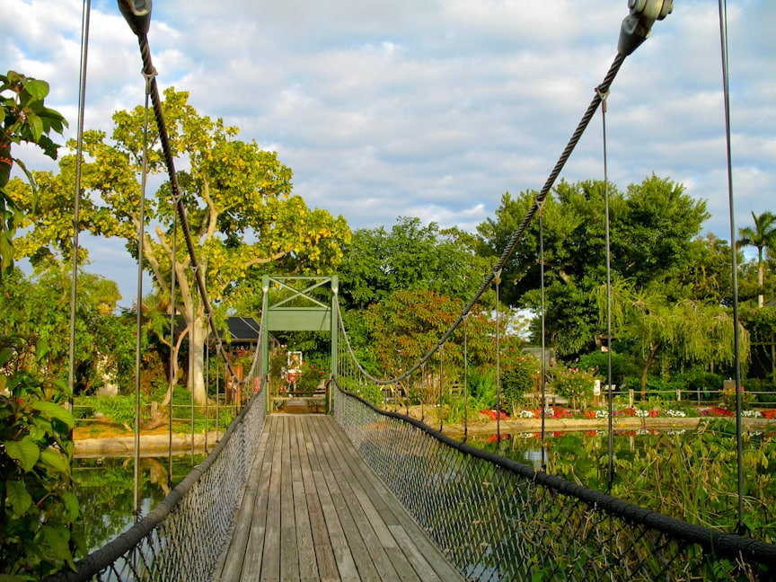 Swinging bridge at Butterfly World
