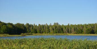 Mac Lake at Colt Creek State Park
