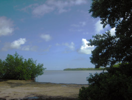 Florida Bay at Curry Hammock State Park