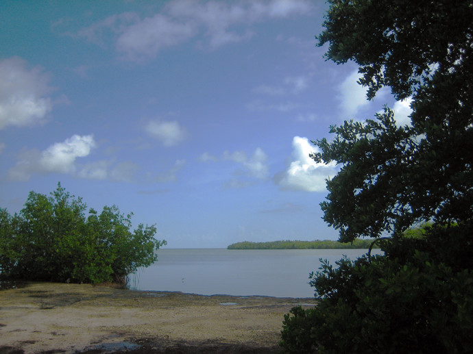 florida bay at curry hammock state park curry hammock state park   florida hikes   rh   floridahikes