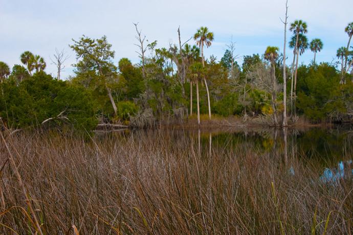 Econfina River State Park