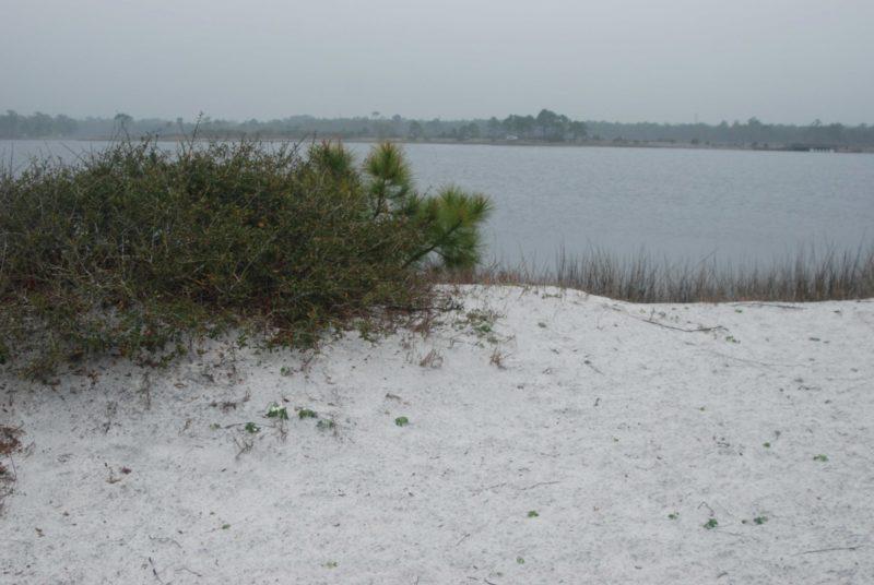 Grayton Beach Western Lake
