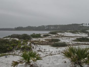 Grayton Beach Western Lake view
