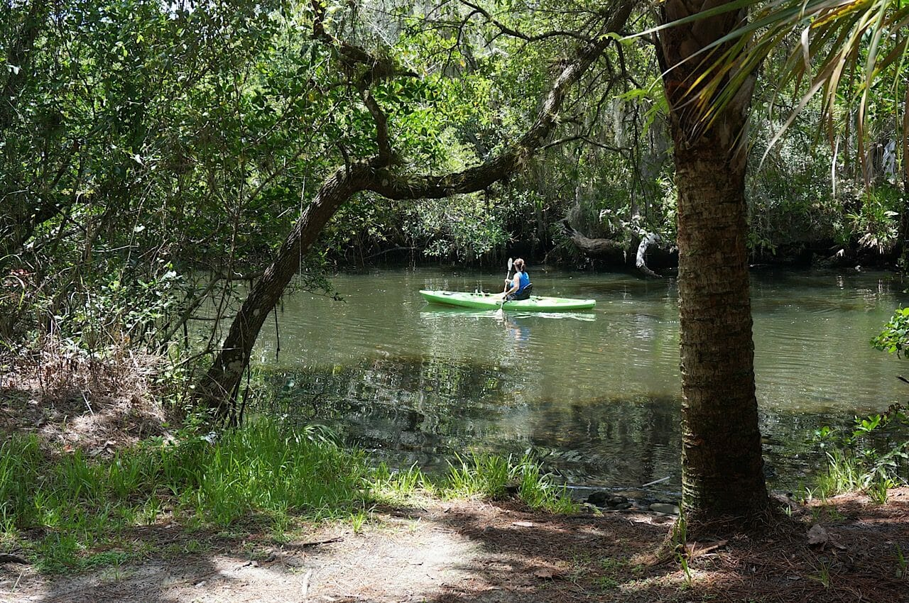 Kayaker on the Estero River