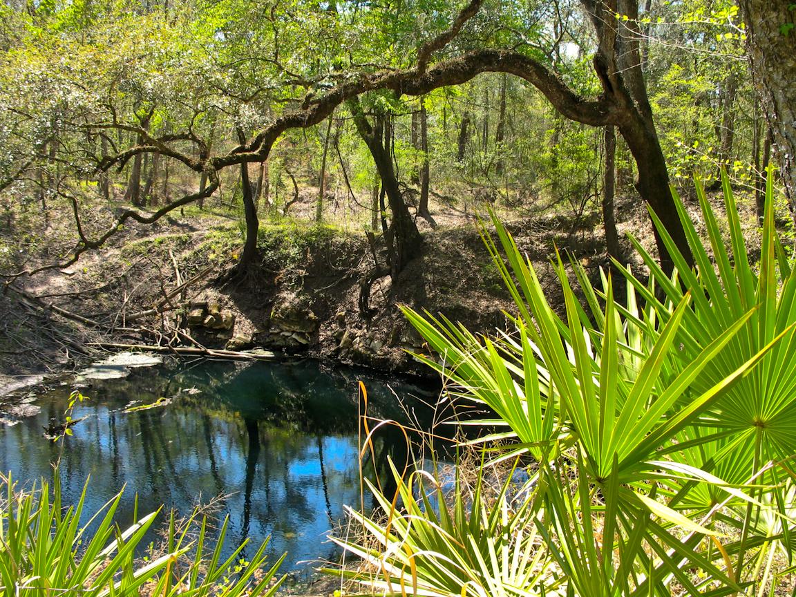 Lafayette Blue Springs