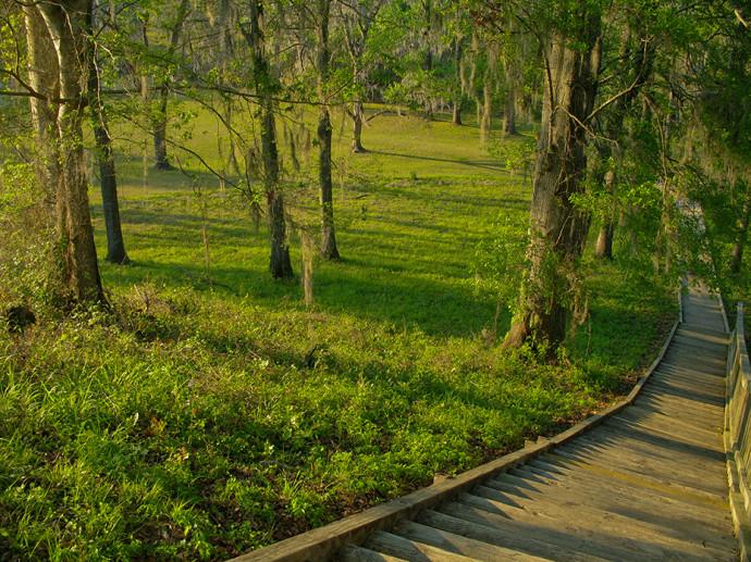 Lake Jackson Mounds State Park