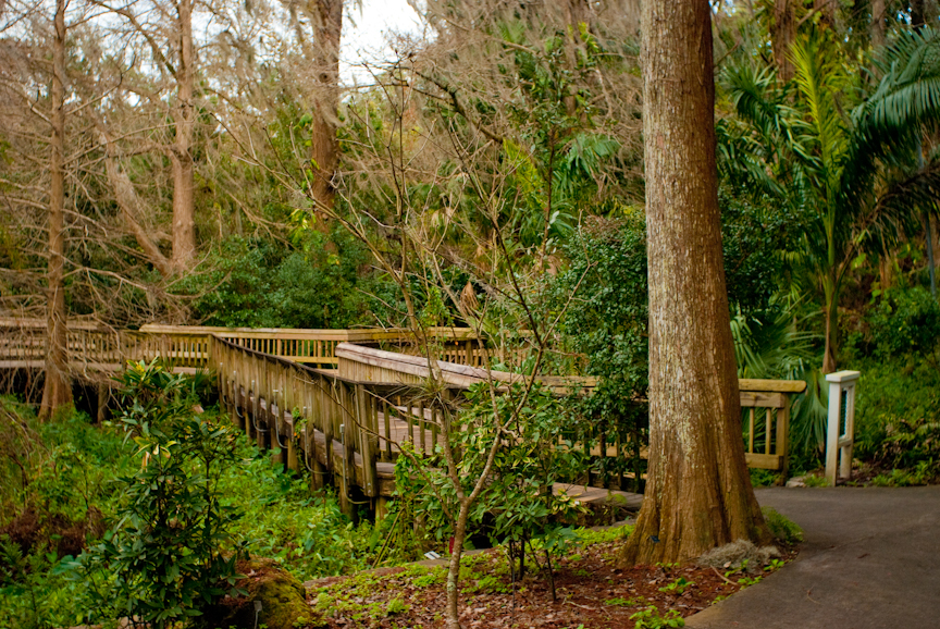Harry p leu gardens florida hikes for Jardines de harry p leu