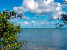 Hiking in the Florida Keys