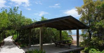 Picnic at Long Key