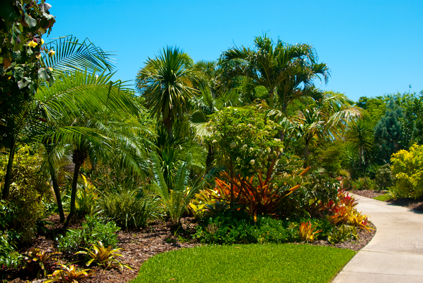 Mounts botanical garden florida hikes - West palm beach botanical garden ...