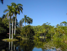 Historic Sites Florida Hikes
